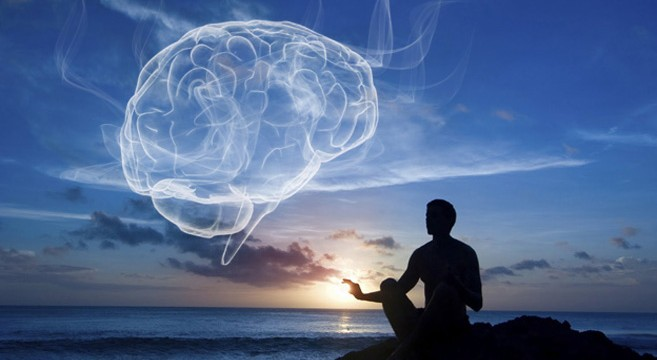 brainharvardmeditation657x36028129